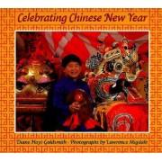 Celebrating Chinese New Year by Diane Hoyt-Goldsmith