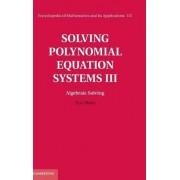 Solving Polynomial Equation Systems III: Volume 3, Algebraic Solving by Teo Mora