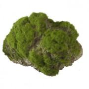 Moss Stone met Zuignap L