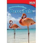 USA Las Matematicas: Describelo (Use Math: Describe It) (Spanish Version) (Foundations Plus)