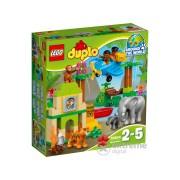 LEGO® DUPLO® Jungla 10804