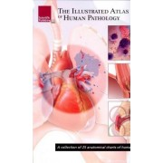 Illustrated Atlas of Human Pathology by Scientific Publishing
