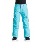 Quiksilver Сноубордические штаны Porter