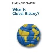 What is Global History? by Pamela Crossley