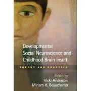 Developmental Social Neuroscience and Childhood Brain Insult by Vicki Anderson