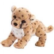 Chillin Cheetah Cub