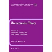 Economic Growth and Short-Term Equilibrium: Volume B by Gerard Meurant