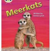 Meerkats: Non-Fiction Set 22 by Emma Lynch