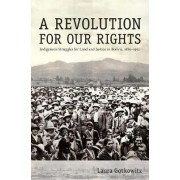 A Revolution for Our Rights by Laura Gotkowitz