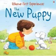 The New Puppy by Anna Civardi