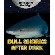 Bull Sharks After Dark
