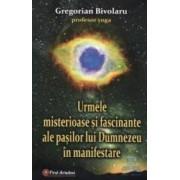 Urmele misterioase si fascinante ale pasilor lui Dumnezeu in manifestare - Gregorian Bivolaru