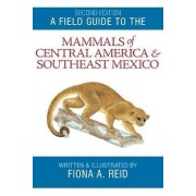A Field Guide to the Mammals of Central America and Southeast Mexico by Fiona A. Reid