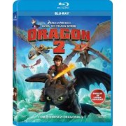How to Train Your Dragon 2 BluRay 2014