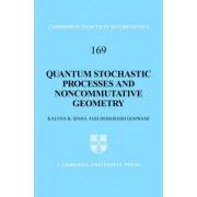 Quantum Stochastic Processes and Non-commutative Geometry by Kalyan B. Sinha