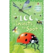 100 Insects to Spot by Sarah Khan