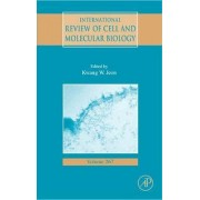 International Review of Cell and Molecular Biology: Vol. 267 by Kwang W. Jeon