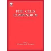Fuel Cells Compendium by Dr. Nigel N. P. Brandon