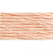 DMC Six Strand Embroidery Cotton 8.7 Yards-Very Light Apricot-Lighter than 3824