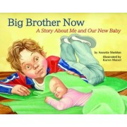 Big Brother Now by Annette Sheldon