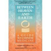 Between Heaven and Earth by Harriet Beinfield