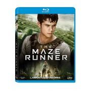 The Maze Runner:Dylan O'Brien,Kaya Scodelario - Labirintul:Evadarea (Blu-Ray)