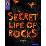 Oxford Reading Tree Treetops Infact: Level 11: Secret Life of Rocks by Jo Bourne