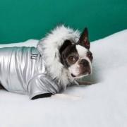 River Island Womens RI Dog Silver metallic fur trim parka