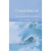 Craniosacral Therapy by John E. Upledger
