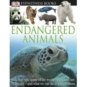 Endangered Animals by Ben Hoare