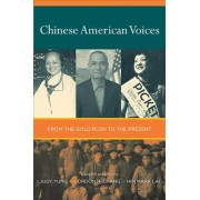 Chinese American Voices by Judy Yung