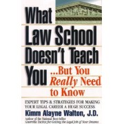 What Law School Doesn't Teach You...but You Really Need to Know! by Kimm Alayne Walton