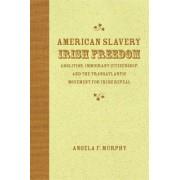 American Slavery, Irish Freedom by Assistant Professor Angela F Murphy