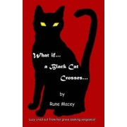 What If.A Black Cat Crosses. by Rune Macey