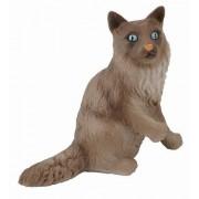 Collecta - Col88321 - Birman Cat Sitting - Taglia S