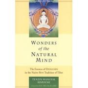 Wonders Of The Natural Mind n of Tibet by Tenzin Wangyal
