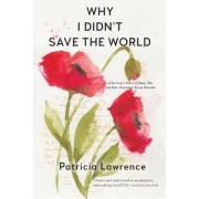 Why I Didn't Save the World: A Survivor's Story of Rape, Life, and Post-Traumatic Stress Disorder