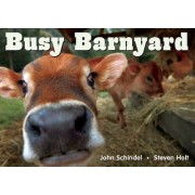 Busy Barnyard by John Schindel