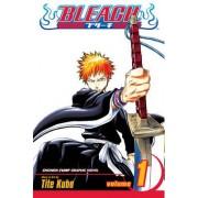 Bleach: v. 1 by Tite Kubo