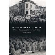 In the Shadow of Slavery by Leslie M. Harris