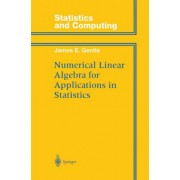 Numerical Linear Algebra for Applications in Statistics by James E. Gentle