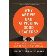 Why Are We Bad at Picking Good Leaders? by Jeffrey Cohn