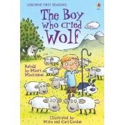 The Boy Who Cried Wolf by Mairi Mackinnon