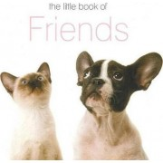 The Little Book of Friends by The Next Big Think