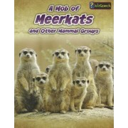 A Mob of Meerkats by Louise Spilsbury