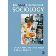 The Sage Handbook of Sociology by Craig Calhoun