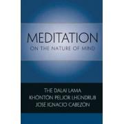 Meditation on the Nature of Mind by Dalai Lama XIV