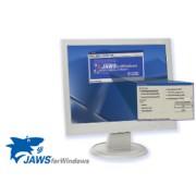 Freedom Scientific JAWS Professional (pentru companii, instituții publice, ONG-uri, universități etc) – cititor de ecran cu voce în limba română, licență pentru un calculator