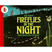 Fireflies in the Night by Judy Hawes