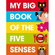 My Big Book of the Five Senses by Patrick George